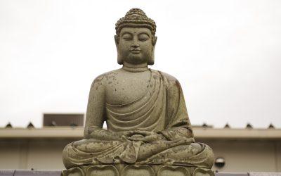 Czy Oświecenie jest dostępne od ręki?